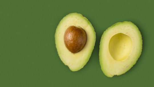 Photo faire pousser un avocat